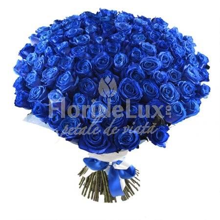 pret 101 trandafiri albastri