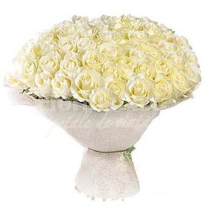 Trandafiri albi pentru Ziua Indragostitilor tr