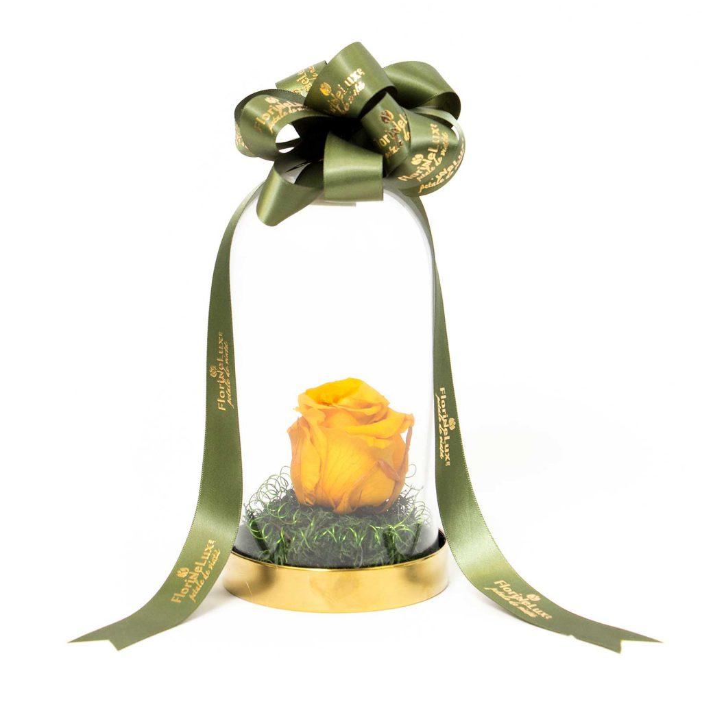trandafir criogenat online