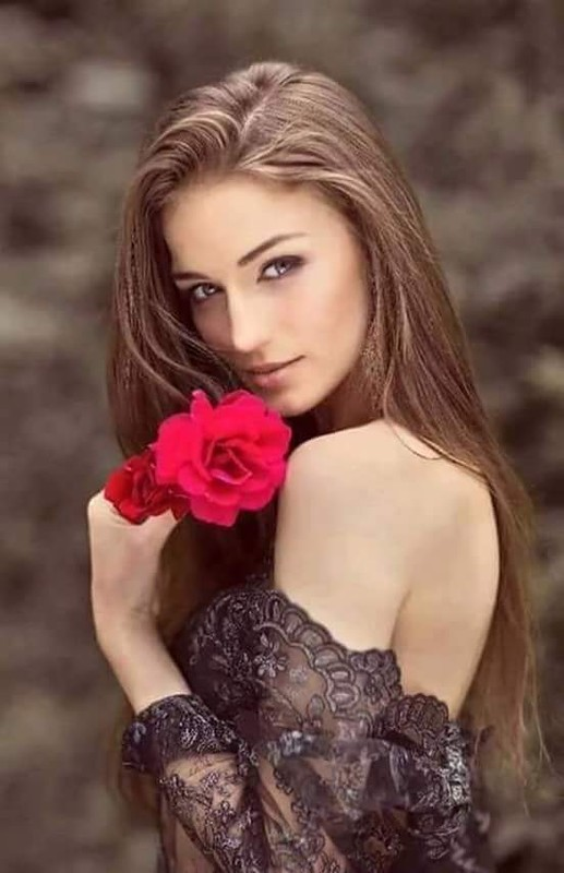 Pret 101 trandafiri