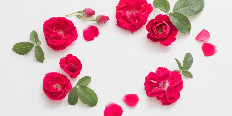 25 citate despre dragoste pentru Ziua Indragostitilor