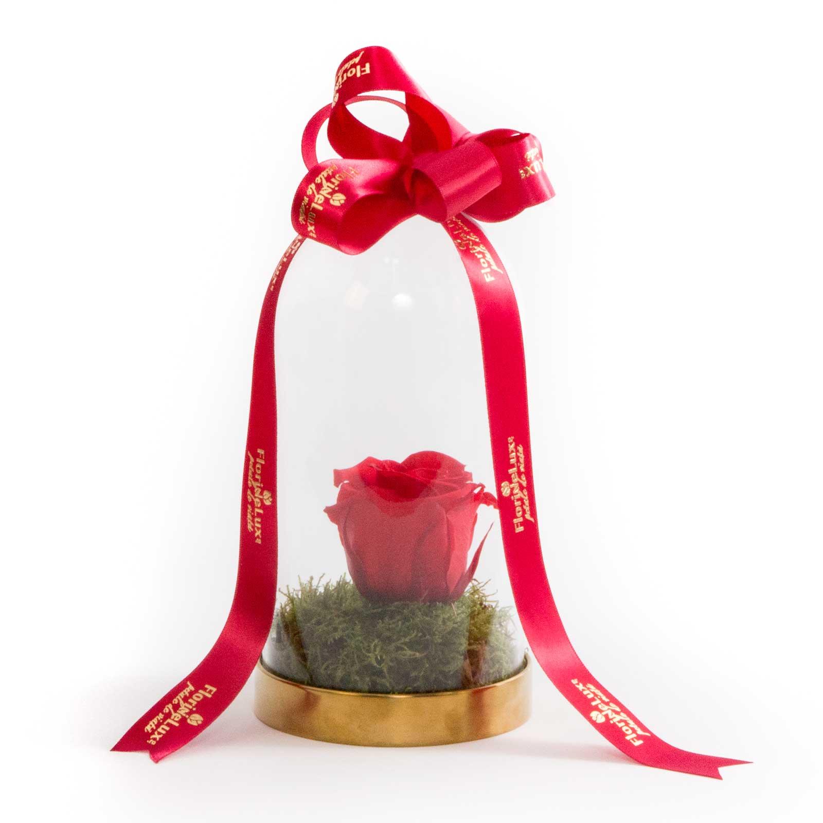 Trandafiri criogenati cadou Ziua Indragostitilor