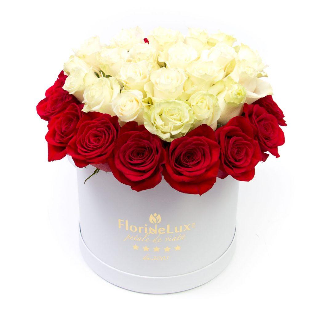Cutii flori deosebite de Craciun