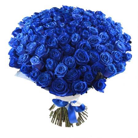 101 trandafiri albaștri, doar 1606,99 RON!