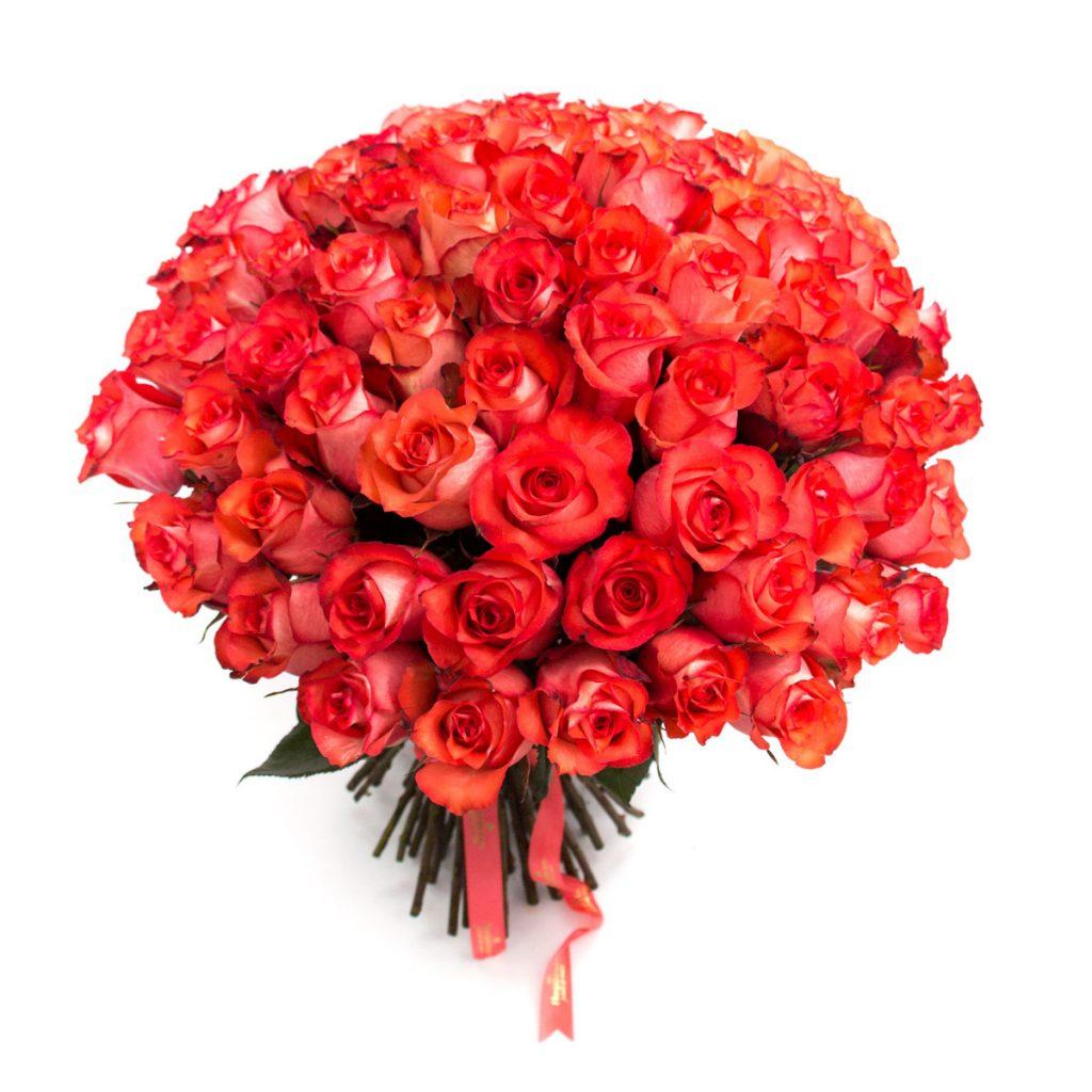 79 trandafiri portocalii, doar 797,99 RON!